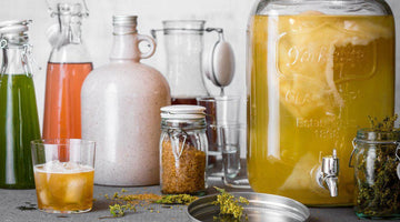 Comment faire son kombucha maison