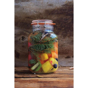 The Wildcrafting Brewer fruits kvass recipe