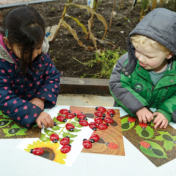 Ladybird Counting Cards