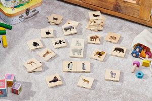 Wild Animal Family Match Set