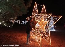 2D/3D Enchanted Gold Star - 10.5ft