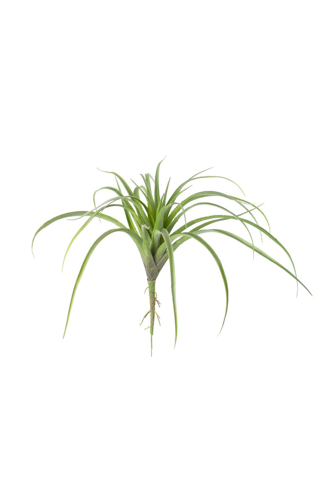 Faux Air Plant LAST CHANCE