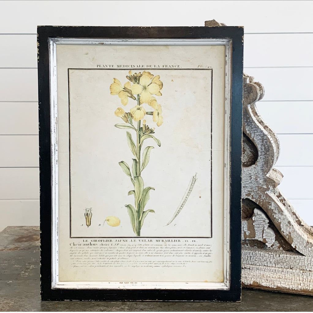 Yellow Botanical Print Collection - 9 to Choose From