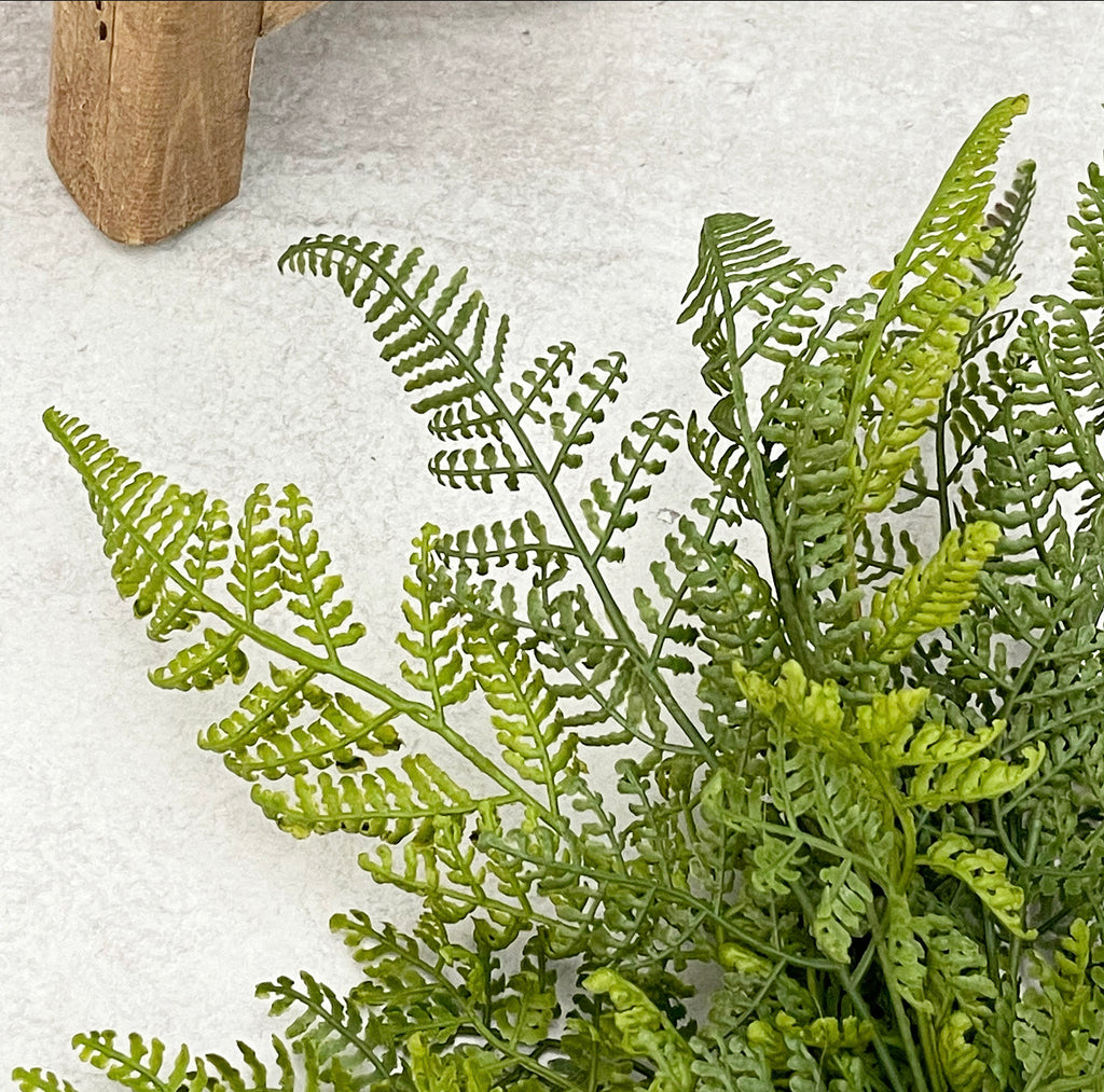 Lace Fern Pick
