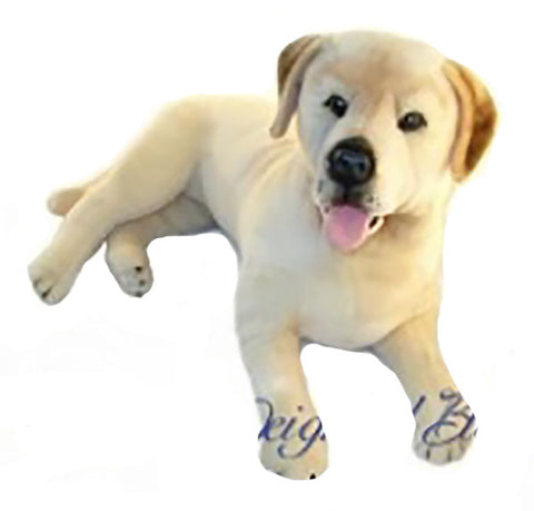 Nana's Weighted Toys - Beau the 3.6kg  Labrador