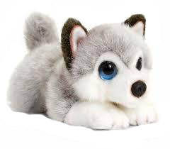 Nana's Weighted Toys - Stormy the 1kg  Baby Husky Dog