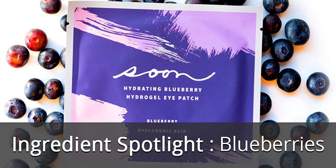Ingredient Spotlight: Blueberries