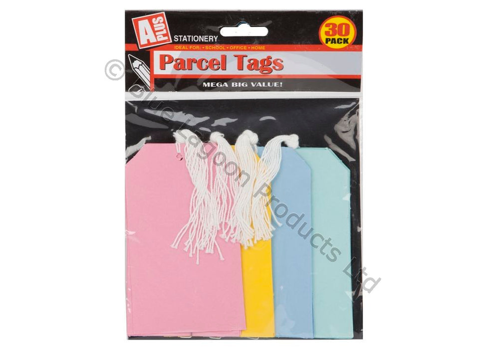 Tie On Luggage / Parcel Tags - 30pc