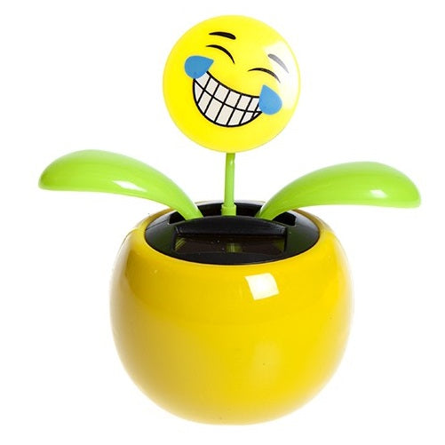 Solar Dancing Emoticon Plant