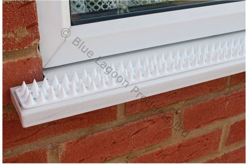 5m White Anti Climb Security Spikes