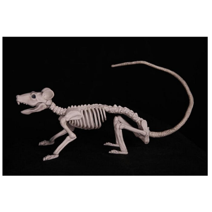 Skeleton Rat Decoration - 38cm