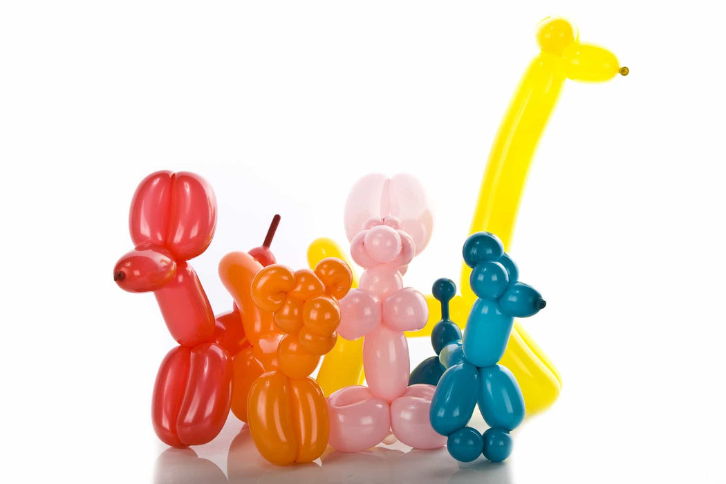 DISC Modelling Balloons - 25pc Set