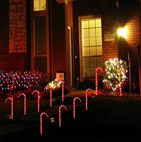LED Candy Canes - 10pc
