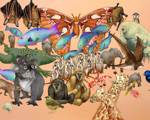 """All Kinds of Animals"" limited-edition print by Sisal Creative"