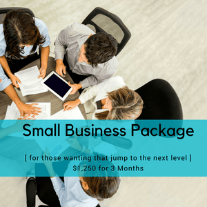 SMALL BIZ CONSULTING PACKAGE