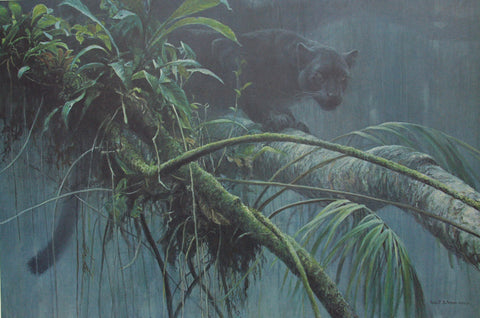 "Robert Bateman ""Shadow of the Rainforest"""