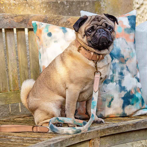 Mutt and Hounds Luxury Dog Collars and Leads
