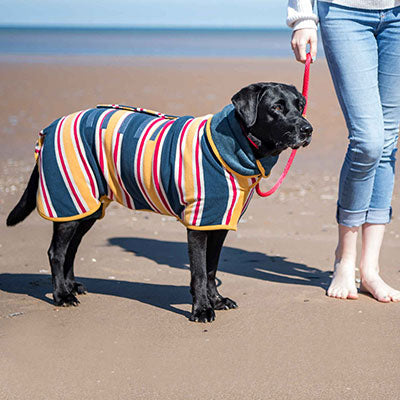 Ruff and Tumble Beach Striped Cotton Towelling Dog Drying Coat