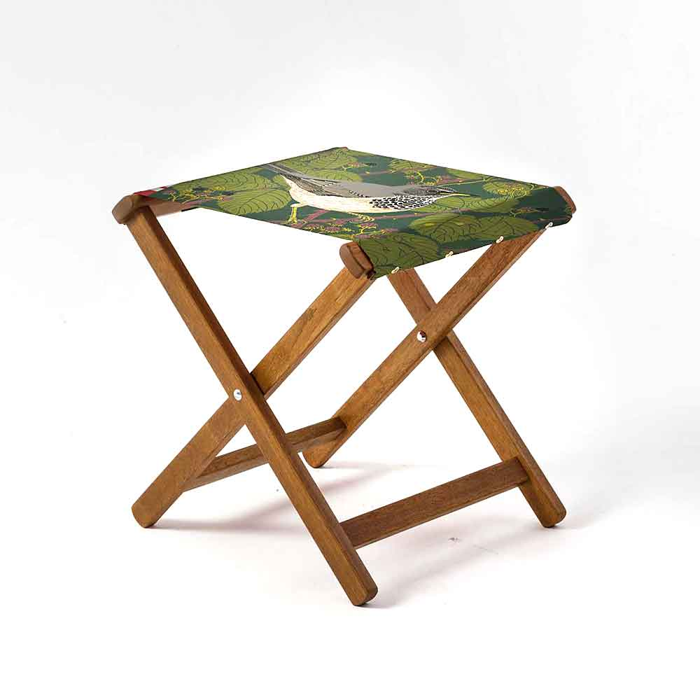 ARTWORLD STOOLS Black Throated Thrush by R Gillmor Hardwood Folding Stool - 10 Day Delivery