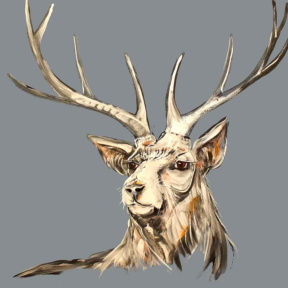 CAROLINE WALKER 'Andrew' The Stag Signed Limited Edition Wall Print | Box Canvas | Black or White Frame