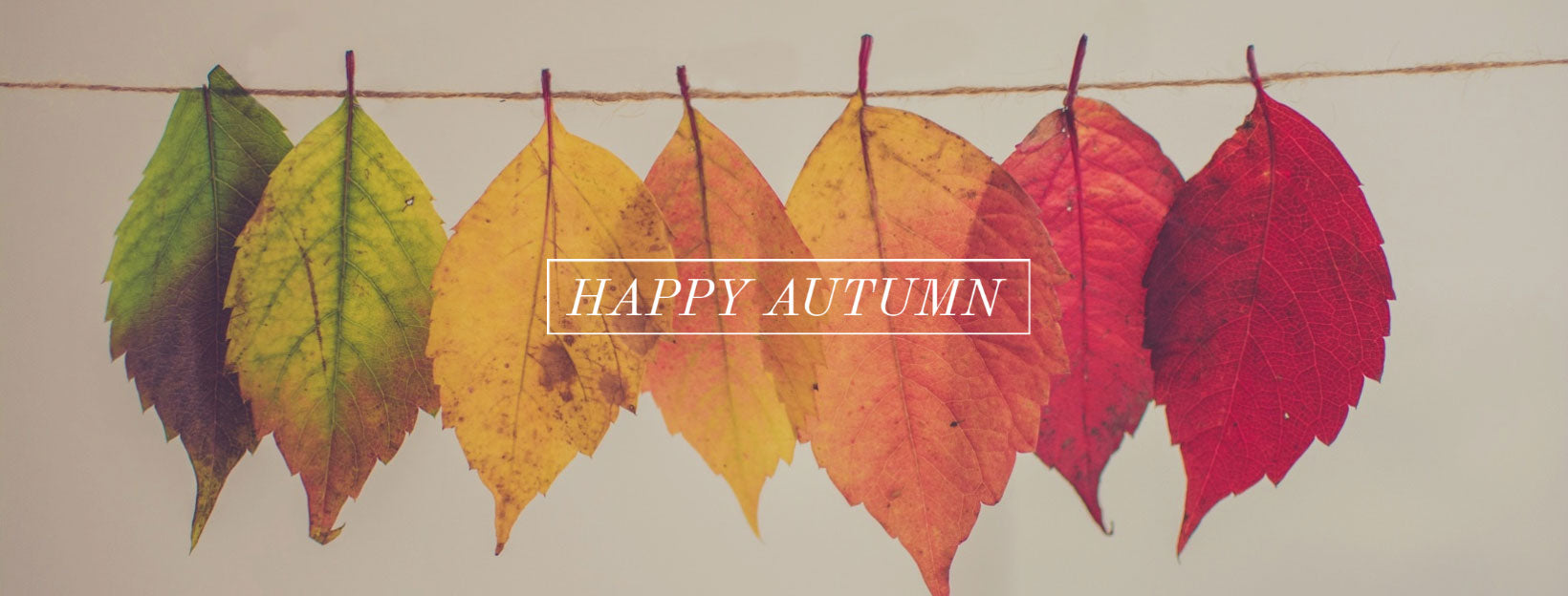 Happy Autumn!
