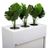 products/planter-box-office-accessory-with-plants.jpg