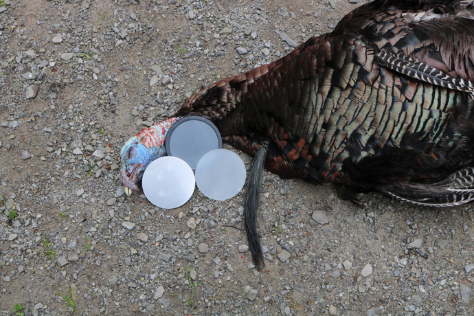 The Ultimate Turkey Hunting System