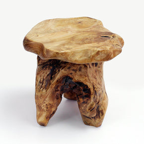 14-Inch Tall Live Edge Organic Cedar Stump Stool