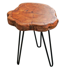 Natural Wood Stump Rustic Surface End Table
