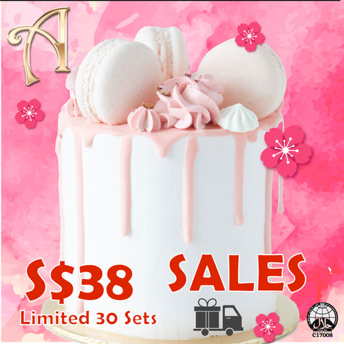 3.8. Sales! Lychee Rose Cake Petite  | Including 3 pcs Macarons + 6pcs Classic 1 Macarons | $38.00 nett only