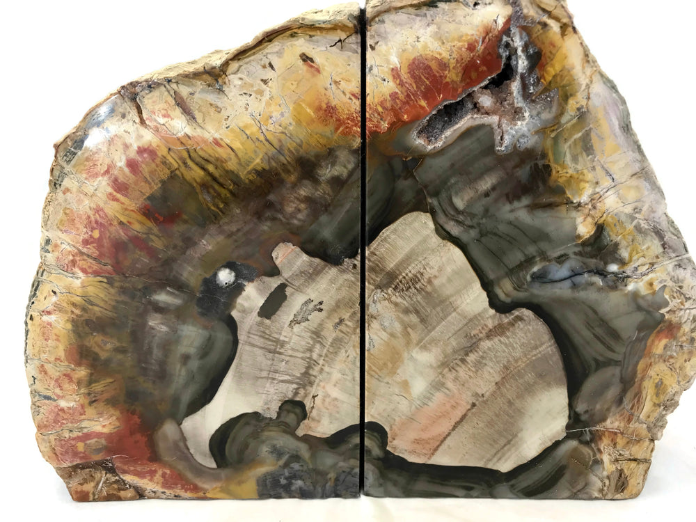 Prismatic Petrified Wood Bookends