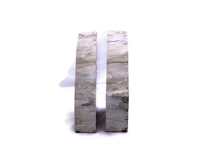 Petrified Elm Wood Bookends