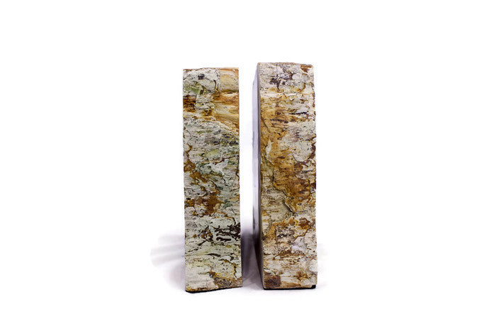 Petrified Sequoia Wood Bookends