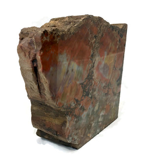 Arizona Rainbow Petrified Wood Bookends