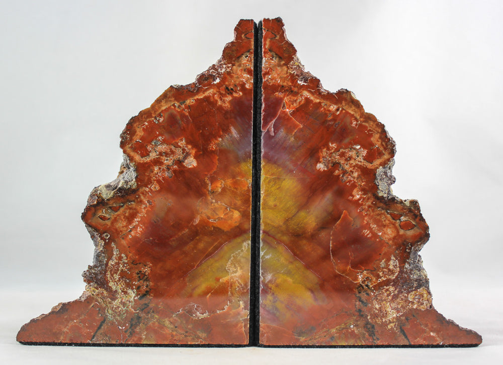 Arizona Petrified Wood Bookends