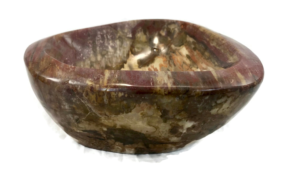 Tree Ringed Petrified Wood Bowl