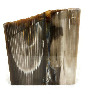 Super Striated Petrified Wood Freeform