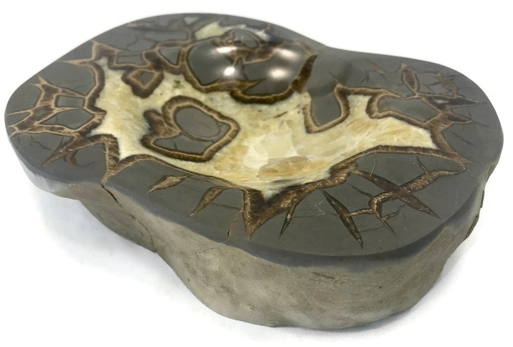 Patterned Septarian Bowl