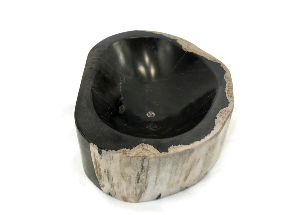 Polished Black and Beige Wood Grained Petrified Wood Bowl
