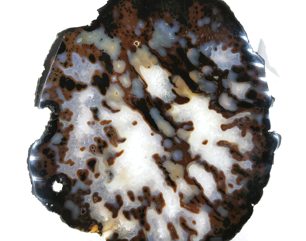 Dotted Agate Slice