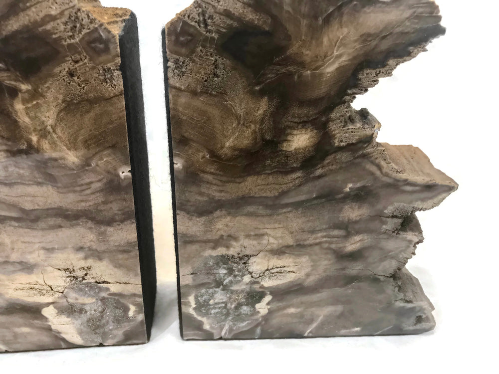 Earth Toned Petrified Wood Bookends