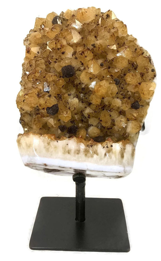 Standing Citrine Cluster