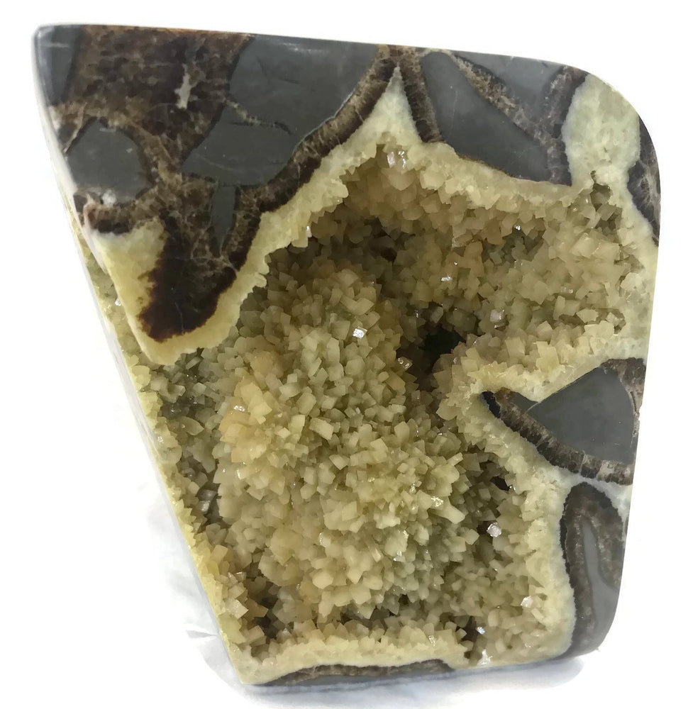 Polished Septarian Geode