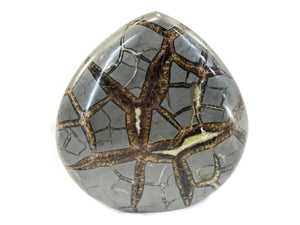 Flame Shaped Polished Septarian