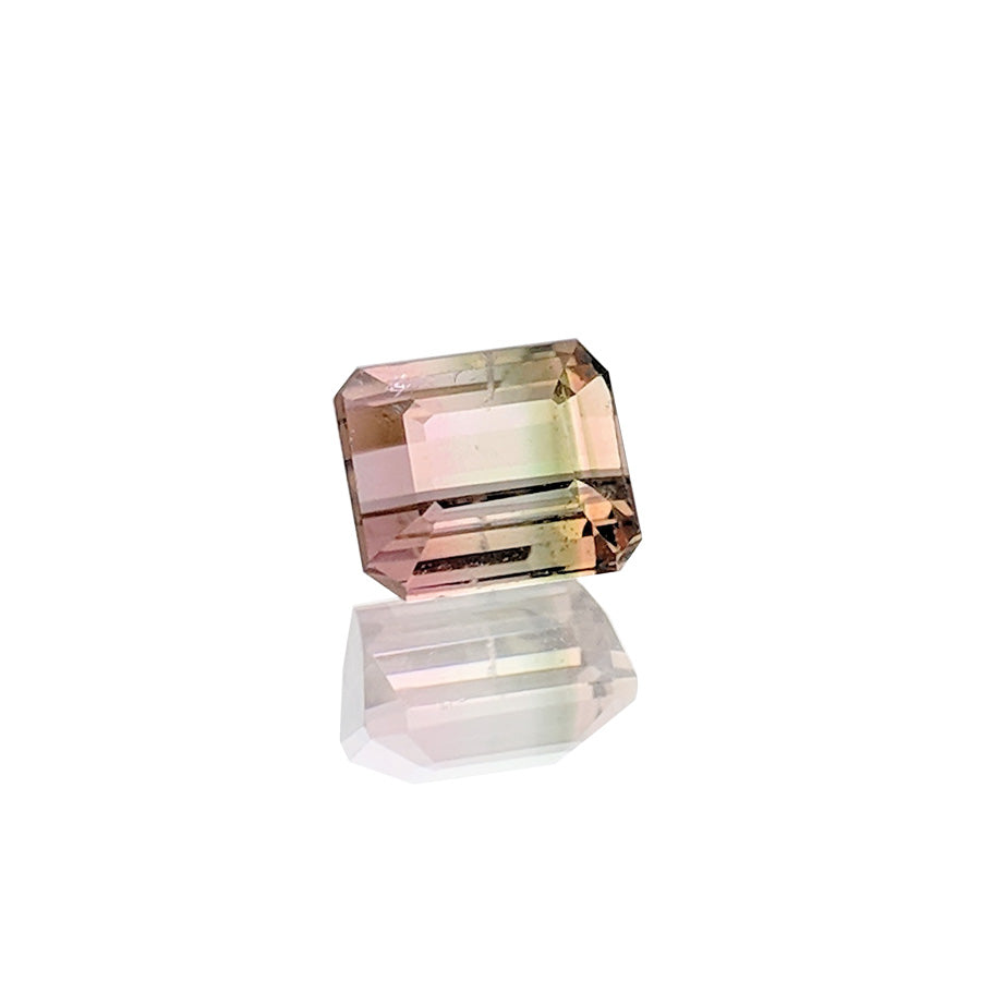 0.86ct Bi-ColourTourmaline