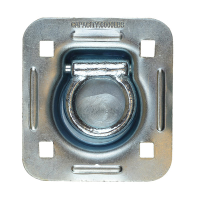 Heavy Duty Bolt On Recessed Mount D-Ring with Back Plate