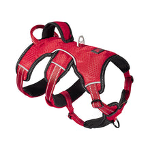 tracker - rugged harness
