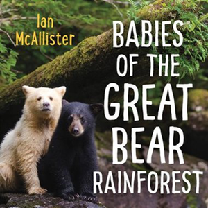 Babies Of The Great Bear Rainforest
