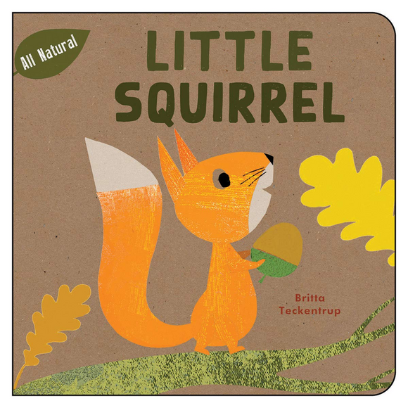 Little Squirrel