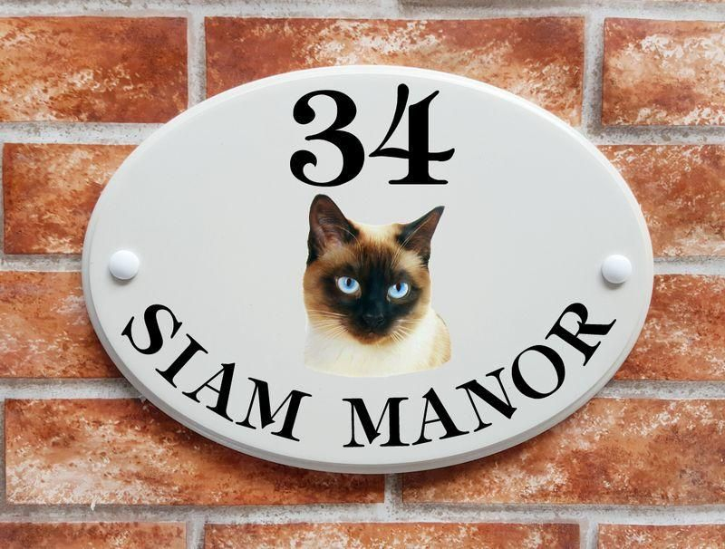 Siamese cat - House Sign Shop